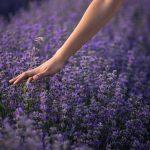 La naturopathie, une médecine douce pour tous !