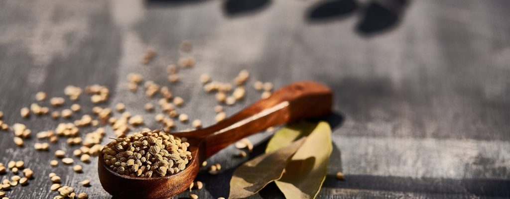 Les graines germées source de nutriment
